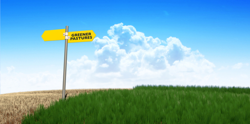 Moving On To Greener Pastures: A Partner Checklist For Leaving Your Current Firm